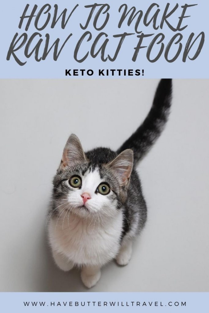 Raw cat food recipe. A recipe made using real food, easily found in the supermarket, designed for optimal health for your cats. #rawcatfood #rawcatfoodrecipe #homemadecatfood