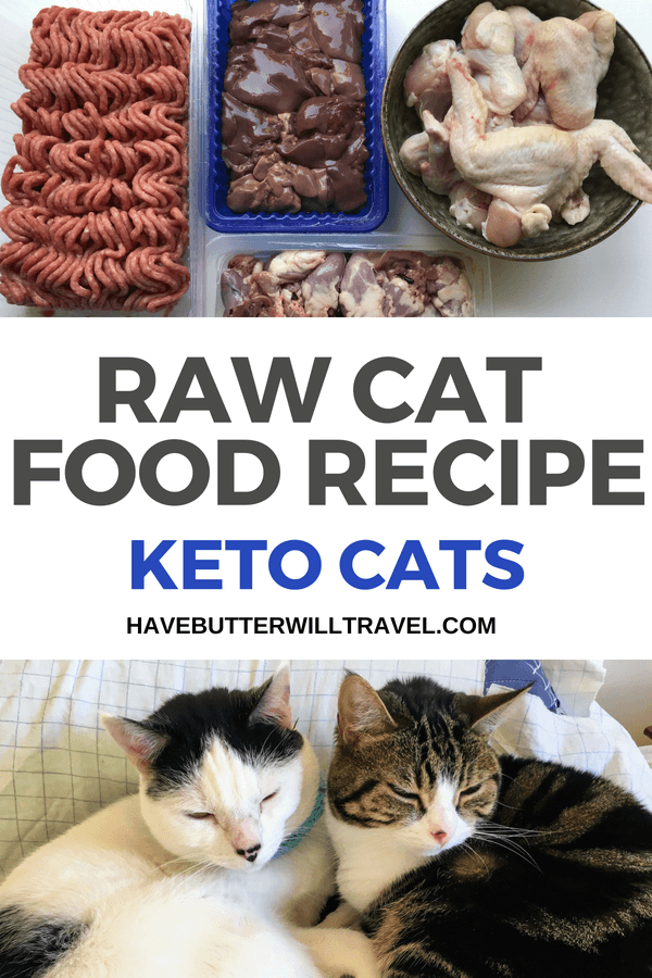 Natural healthy cat food recipes Raw Cat Food Recipe Keto Kitties With Allergies Have Butter Will Travel